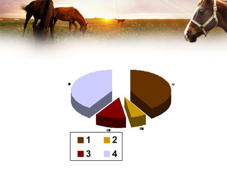 Horses PowerPoint Template Slide 17