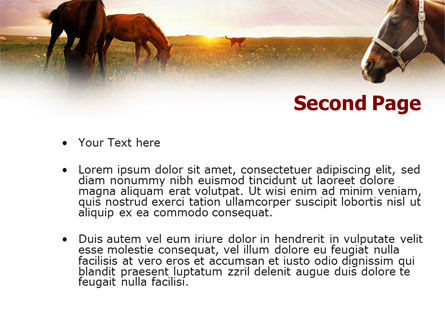 Horses PowerPoint Template Slide 2