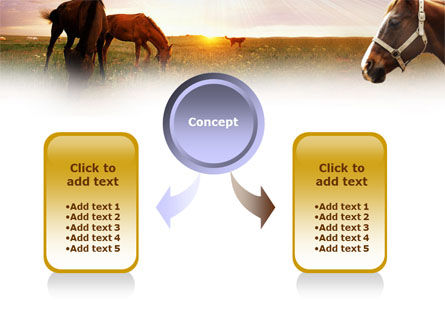 Horses PowerPoint Template, Slide 4, 01228, Agriculture — PoweredTemplate.com