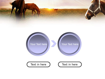 Horses PowerPoint Template Slide 5