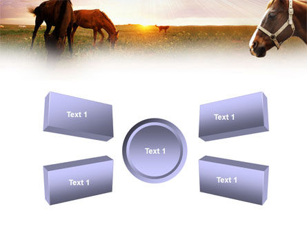 Horses PowerPoint Template Slide 6