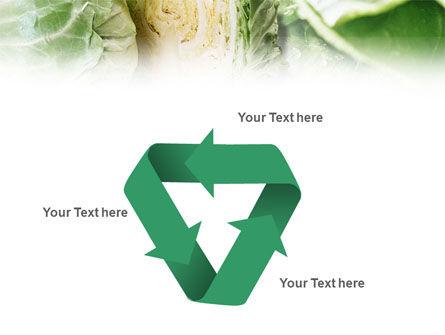 Fresh Cabbage PowerPoint Template Slide 10