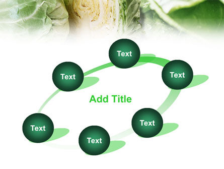 Fresh Cabbage PowerPoint Template Slide 14