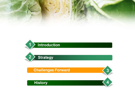 Fresh Cabbage PowerPoint Template, Slide 3, 01239, Food & Beverage — PoweredTemplate.com