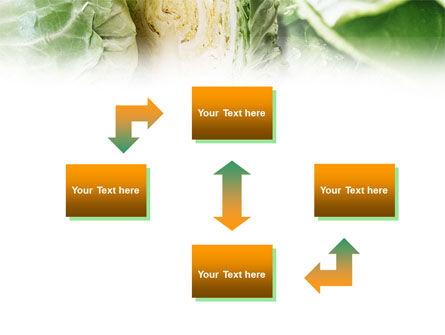Fresh Cabbage PowerPoint Template, Slide 4, 01239, Food & Beverage — PoweredTemplate.com