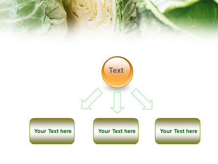 Fresh Cabbage PowerPoint Template Slide 8