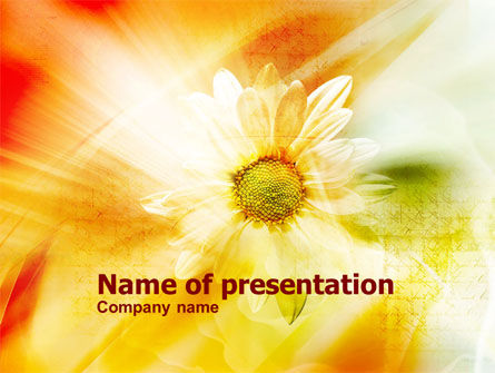 Orange Daisy Theme PowerPoint Template, 01245, Nature & Environment — PoweredTemplate.com
