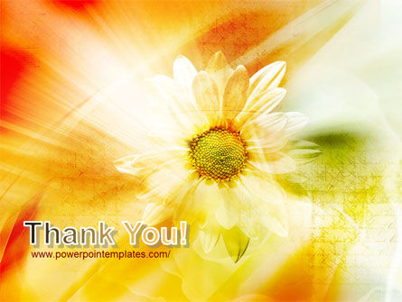 Orange Daisy Theme PowerPoint Template Slide 20