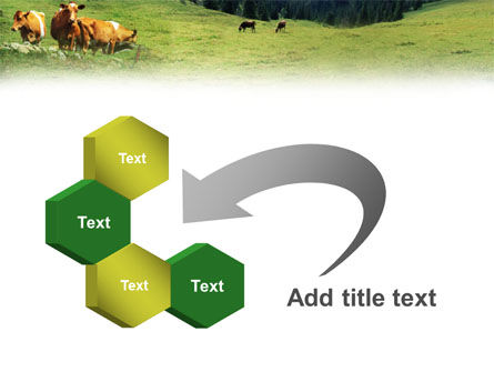 Cows on the Meadow PowerPoint Template Slide 11