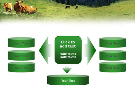 Cows on the Meadow PowerPoint Template Slide 13