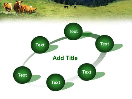 Cows on the Meadow PowerPoint Template Slide 14