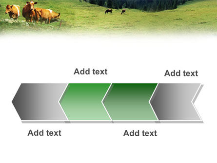 Cows on the Meadow PowerPoint Template Slide 16