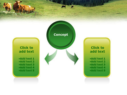Cows on the Meadow PowerPoint Template Slide 4