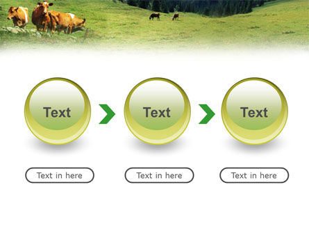 Cows on the Meadow PowerPoint Template Slide 5
