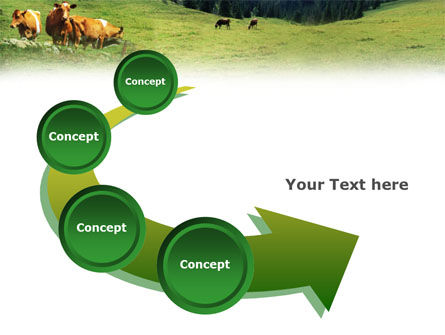 Cows on the Meadow PowerPoint Template Slide 6
