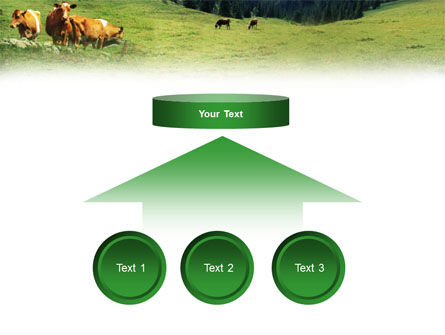 Cows on the Meadow PowerPoint Template Slide 8