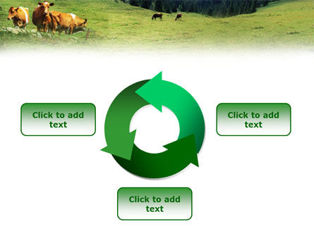 Cows on the Meadow PowerPoint Template Slide 9