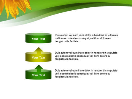 Sunflower In Green PowerPoint Template Slide 10