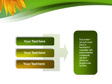 Sunflower In Green PowerPoint Template Slide 11