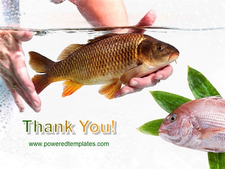 Fish in Water PowerPoint Template Slide 20