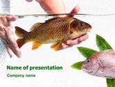 Agriculture: Templat PowerPoint Ikan Di Air #01367