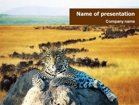 Nature & Environment: Leopard on the Rock PowerPoint Template #01383