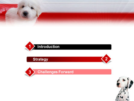 Dalmatian PowerPoint Template, Slide 3, 01392, Animals and Pets — PoweredTemplate.com