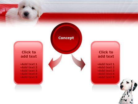 Dalmatian PowerPoint Template, Slide 4, 01392, Animals and Pets — PoweredTemplate.com