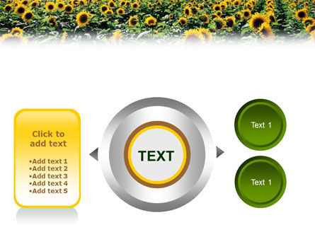 Field of Sunflowers PowerPoint Template Slide 12