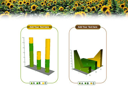 Field of Sunflowers PowerPoint Template Slide 13