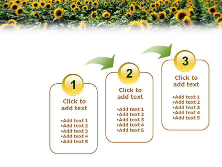 Field of Sunflowers PowerPoint Template Slide 14