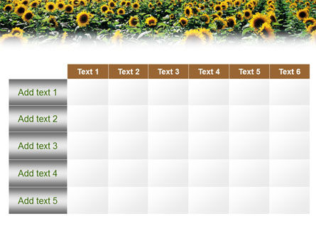 Field of Sunflowers PowerPoint Template Slide 15
