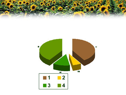 Field of Sunflowers PowerPoint Template Slide 17