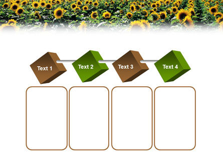 Field of Sunflowers PowerPoint Template Slide 18