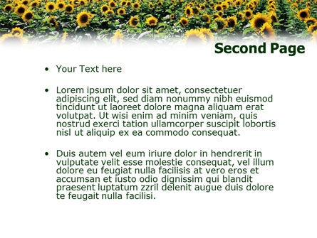 Field of Sunflowers PowerPoint Template Slide 2