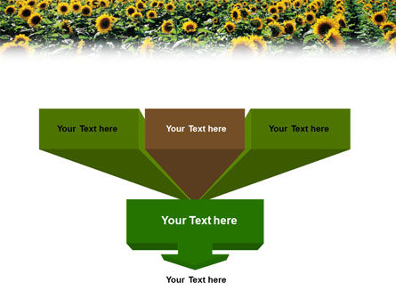 Field of Sunflowers PowerPoint Template Slide 3