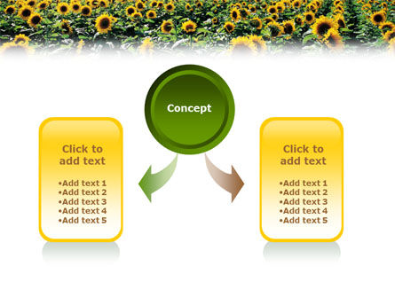 Field of Sunflowers PowerPoint Template Slide 4