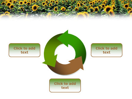 Field of Sunflowers PowerPoint Template Slide 9