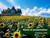Nature & Environment: Field of Sunflowers PowerPoint Template #01410