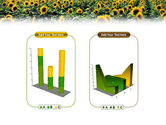 Field of Sunflowers PowerPoint Template#13