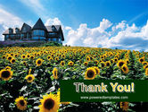 Field of Sunflowers PowerPoint Template#20