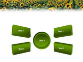 Field of Sunflowers PowerPoint Template#6