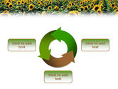 Field of Sunflowers PowerPoint Template#9