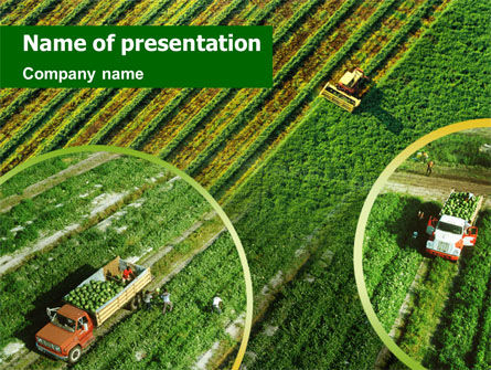 Harvesting PowerPoint Template