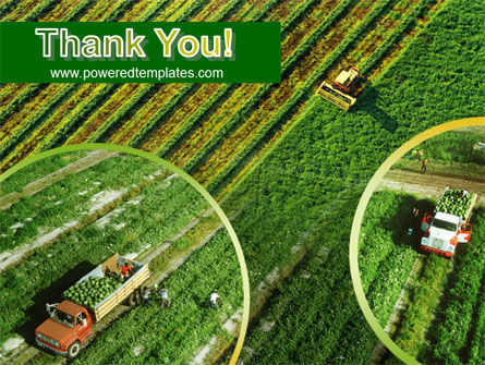 Harvesting PowerPoint Template Slide 20