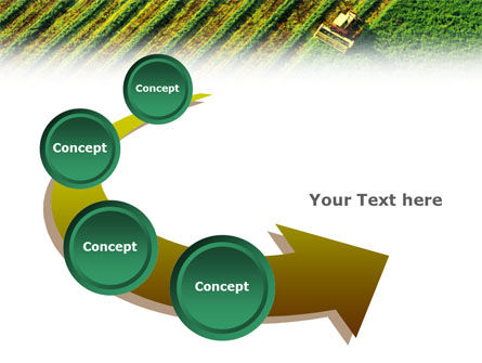Harvesting PowerPoint Template Slide 6