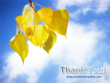 Yellow Leaves PowerPoint Template Slide 20