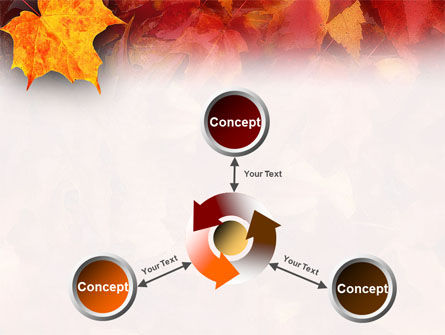 Fallen Red Leaves PowerPoint Template Slide 12
