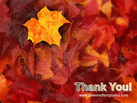 Fallen Red Leaves PowerPoint Template Slide 20