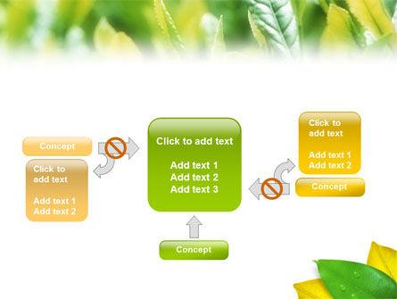 Indian Summer PowerPoint Template Slide 13